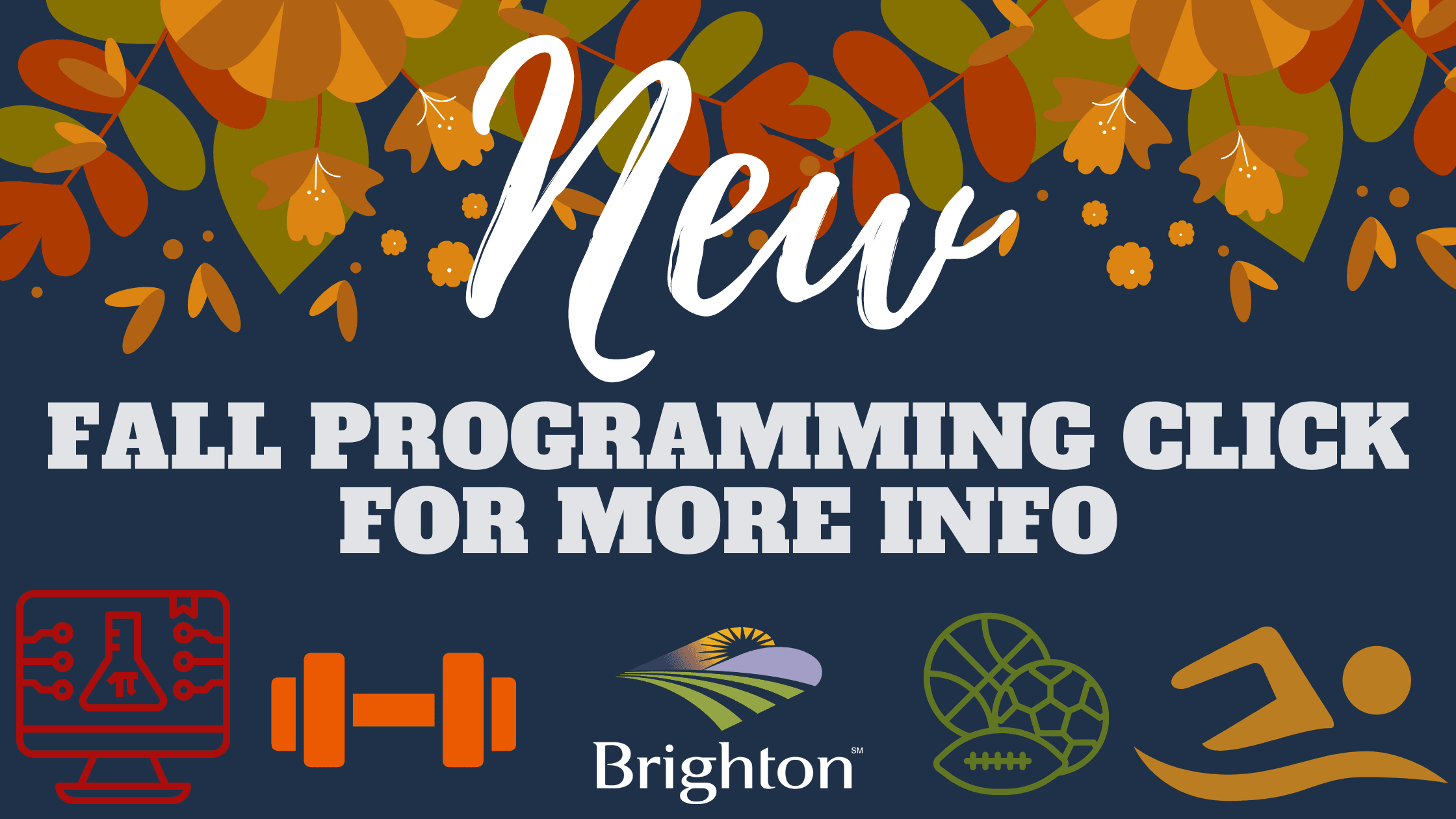 Fall programming banner website